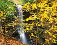 Matthiessen State Park, IL: Matthiessen Falls from Upper Dellls hillside through fall colored maple trees