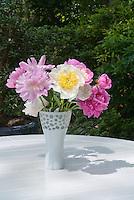 Cut flower arrangement of Paeonia peonies in vase on table mixed varieties white, pink