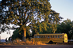 School bus picking up students early morning rural Washington County Oregon State USA