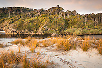 Pingao, native sand dune grass at sunset at Ship Creek, World Heritage Area, South Westland, West Coast, New Zealand