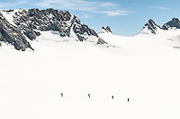 A party of climbers walking across Davis Snowfield of the Franz Josef Glacier. West Hoe Pass behind top right corner - Westland National Park, West Coast, New Zealand