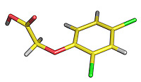2,4-D, Member of the Chlorophenoxy Family of Herbicides..2,4-D,  was the first successful selective herbicide developed. It was introduced in 1946 and rapidly became the most widely used herbicide in the world.