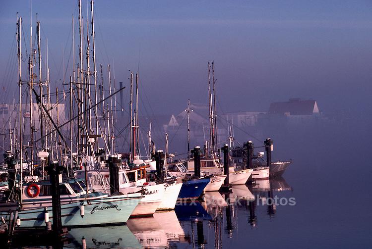 Fishing boats fraser river steveston british columbia cana for Canadian fishing license bc