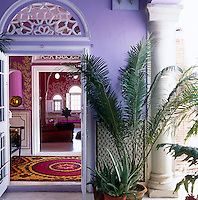 A view of the vivid purple veranda with a potted palm flourishing in a pot beside the ornate doorway to the apartment