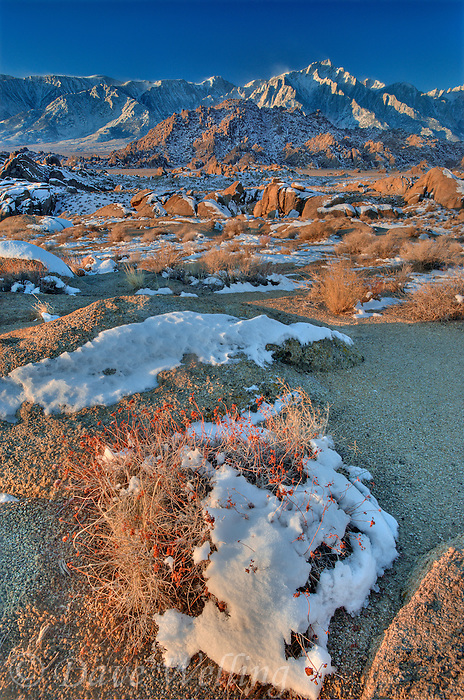 711700275 winter snow blankets the alabama hills and lone pine peak in the eastern sierras california