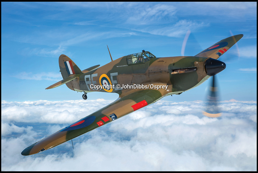 BNPS.co.uk (01202 558833)<br /> Pic: JohnDibbs/Osprey/BNPS<br /> <br /> A Hurricane painted in the colours of No 303 'Polish' Sqn the highest scoring squadron of the Battle of Britain with 121 kills in just 17 days.<br /> <br /> Last of the Few - A photographer's stunning new book is a tribute to the last Hawker Hurricane's - the true workhorse of the Battle of Britain.<br /> <br /> Only 13 WW2 Hurricanes are still airworthy today, compared to over 60 of their more glamorous counterpart the Spitfire.<br /> <br /> But during the Battle of Britain there were in fact twice as many Hurricane's as Spitfires taking on Hitlers Luftwaffe in the skies over southern England.<br /> <br /> The Hurricane may be viewed as less glamorous than the Spitfire, but these stunning photographs reveal just how majestic it was in full flight.<br /> <br /> Photographer John Dibbs has got up close and personal to the legendary fighter planes in order to capture them like never before.<br /> <br /> His 10 year quest for surviving Hurricanes took him all over the world and he photographed them in England, France, the United States and New Zealand.<br /> <br /> Using the skill and experience of highly experienced RAF and civilian pilots, Mr Dibbs was able to fly to within 15ft of some of the last remaining Hurricanes - with breath-taking results.<br /> <br /> There was a fair degree of skill involved as he took the photos from the canopy of a Second World War trainer aircraft which was travelling at 200mph while confronting wind blast.<br /> <br /> The thrilling photos were taken for an a definitive history of the Hurricane which is told by Mr Dibbs and aviation historians Tony Holmes and Gordon Riley in their new book Hurricane, Hawker's Fighter Legend.