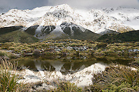 Alpine tarn in Hooker Valley with mountain reflections, Aoraki Mtount Cook National Park, Mackenzie Country, World Heritage Area, New Zealand
