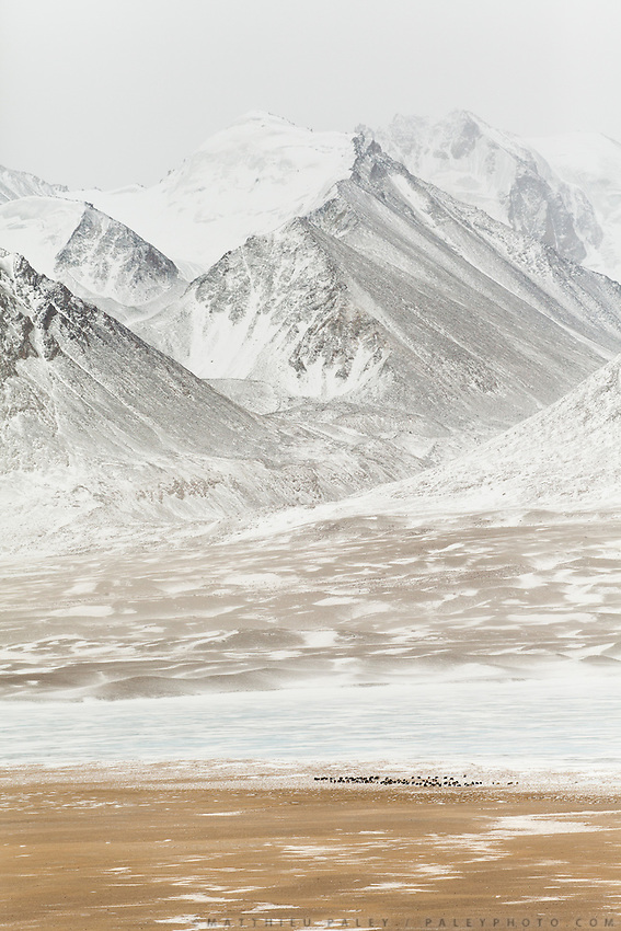 The mighty Pamir mountains, the frozen Chaqmaqtin Lake and a herd of yaks...Trekking through the high altitude plateau of the Little Pamir mountains, where the Afghan Kyrgyz community live all year, on the borders of China, Tajikistan and Pakistan.