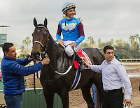 ARCADIA, CA  FEBRUARY 11:#1 Bolo, ridden by Mike Smith, in the winners circle after winning the Arcadia Stakes on February 11, 2017 at Santa Anita Park in Arcadia, CA. (Photo by Casey Phillips/Eclipse Sportswire/Getty Images)
