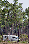 """A camper rests amidst a forest of long pine trees at """"Long Pine Key.""""  Long Pine Key lies near the eastern edge of the Everglades National Park and is accessed through the Ernest F. Coe Visitor Center."""