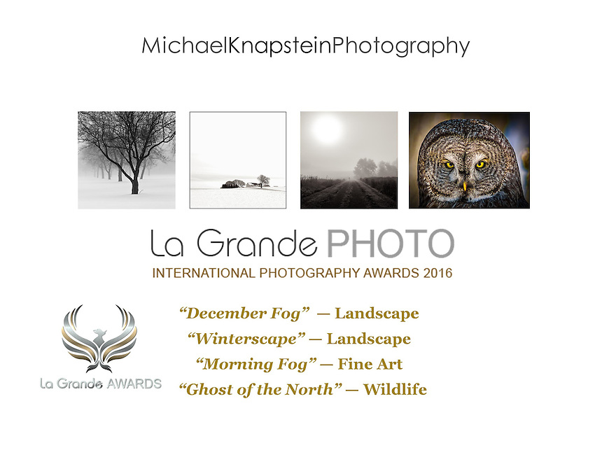 Four images by Michael Knapstein were recognized in the La Grande Photo International Photography Awards in Paris, France.