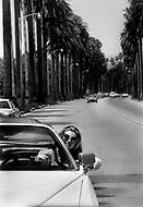 June 1978. Los Angeles, California, USA. Sheila driving around Los Angeles.