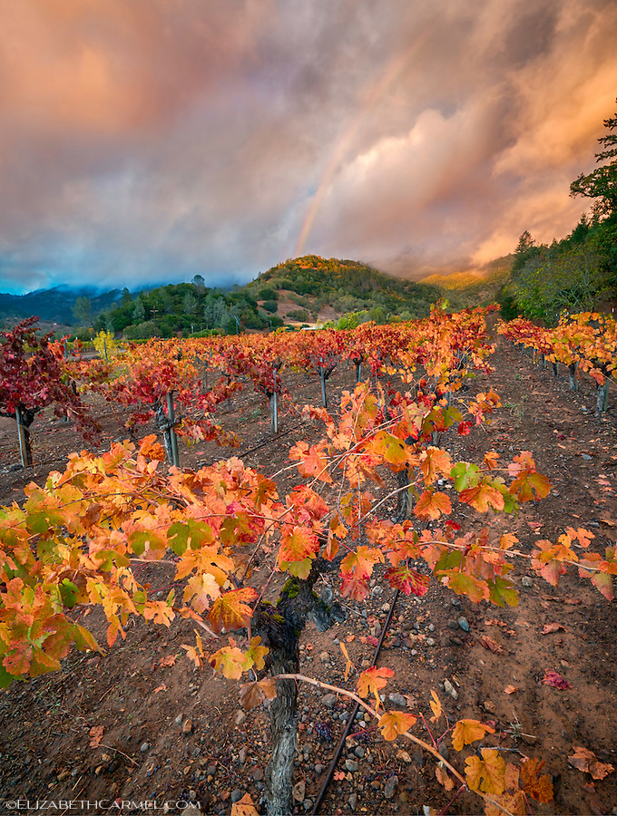 Sunset Rainbow, Napa Valley