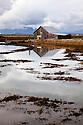 WA07381-00...WASHINGTON - Barn in the Padilla Bay National Estuarine Reserve.