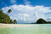 Tropical beach scene with palm trees, Palau Micronesia. (Photo by Matt Considine - Images of Asia Collection)