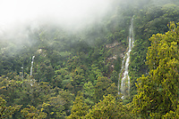Unnamed waterfalls in rainforest near Haast, West Coast, UNESCO World Heritage Area, South Westland, New Zealand, NZ