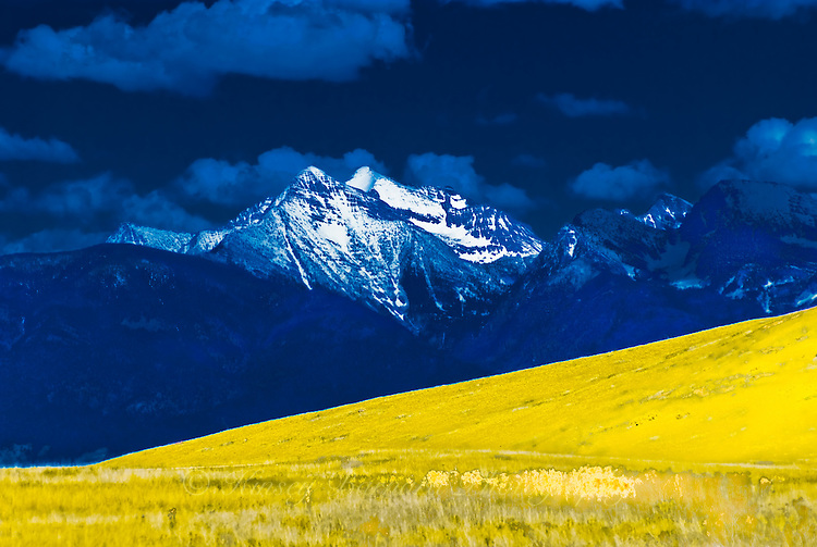 Dark blue skies and yellow grass set off the snow-capped peaks of the Mission Mountains in Montana