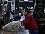 Cutting frozen tuna with a bandsaw at Tokyo Tsukiji Fish Market..Tokyo Metropolitan Central Wholesale Market or Tsukiji Fish Market is the largest fish market in the world.