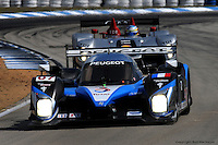 Peugeot senior management cancelled the company's endurance racing program in January, leaving the Audi team with little competition for this year's 60th anniversary celebration at Sebring.