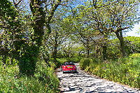 Driving a Mini Cooper convertible car along country lane at Hartland in North Devon, Southern England, UK