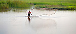 A Cambodian man throws a fishing net in Maung Rossey.