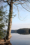 Big Hawk Lake Haliburton Ontario Canada with Mirror Surface