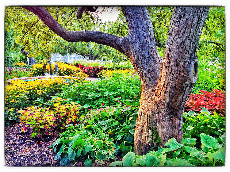 The garden at Prescott Park in Portsmouth, New Hampshire. iPhone photo - suitable for print reproduction up to 8&quot; x 12&quot;.
