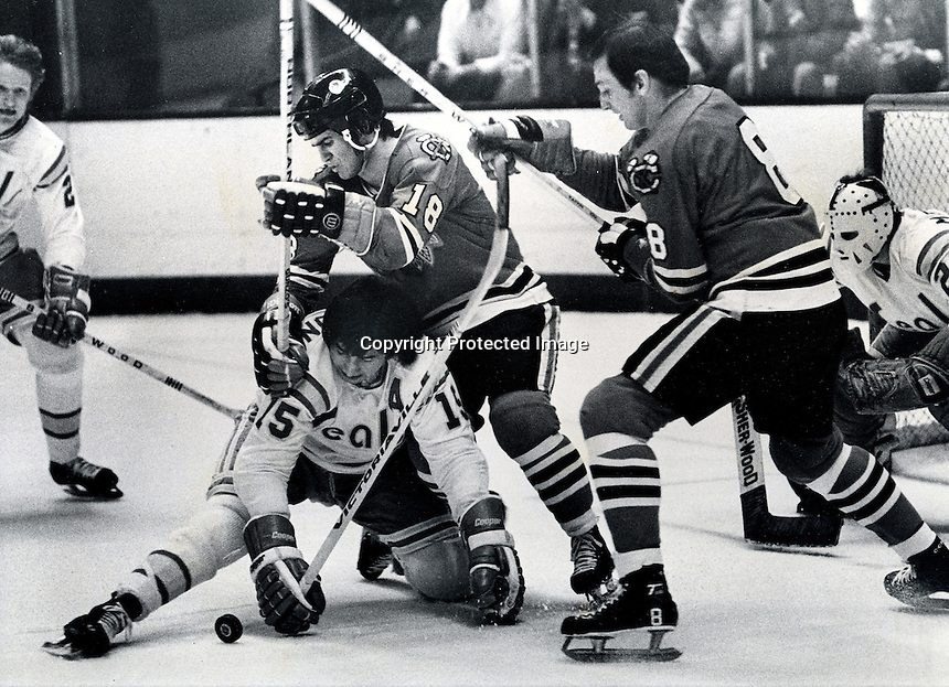 Seals Jim Neilson #15, defends along with Stan Weir and Gilles Meloche.Black Hawks Jim Pappin and Darch Rota. (photo by Ron Riesterer)