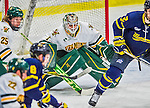 21 February 2015:  University of Vermont Catamount Goaltender Mike Santaguida, a Sophomore from Mississauga, Ontario, in first period action against the Merrimack College Warriors at Gutterson Fieldhouse in Burlington, Vermont. The teams played to a scoreless tie as the Cats wrapped up their Hockey East regular home season. Mandatory Credit: Ed Wolfstein Photo *** RAW (NEF) Image File Available ***