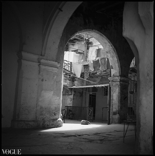 Sleeping Dog, Courtyard, Havana, Cuba 2010 by Paul Cooklin