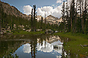 ID00424-00...IDAHO - Clouds reflecting in a small tran below Alice Lake in the Sawtooth Wilderness Area.