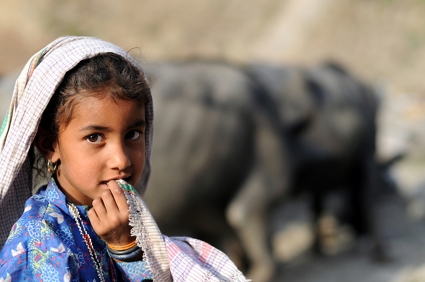 A young girl hangs out with the buffaloes