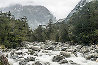 Rainy day at Donne River, Fiordland National Park, Southland, World Heritage Area, New Zealand