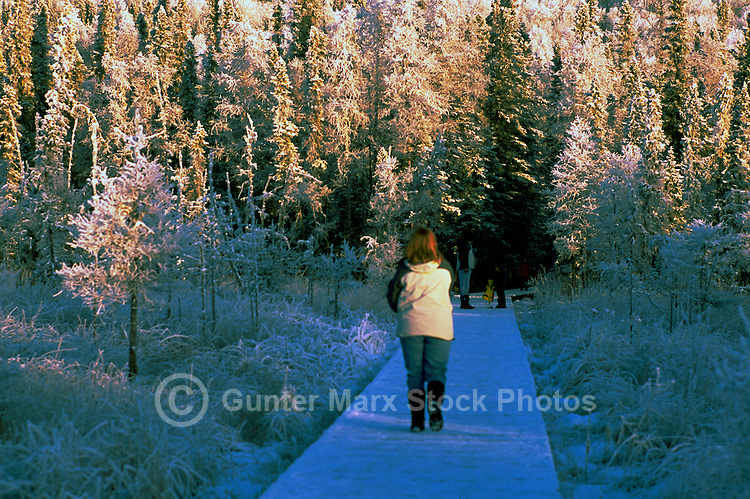 Woman walking on Boardwalk to Hot Spring, in Liard River Hot Springs Provincial Park, Northern British Columbia, Canada