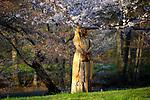 2017 annual Cherry Blossom Festival in branch brook park