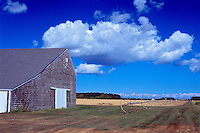 Farm, Jamesport, New York, Long Island, North Fork