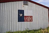 Building Painted with a Texas Flag