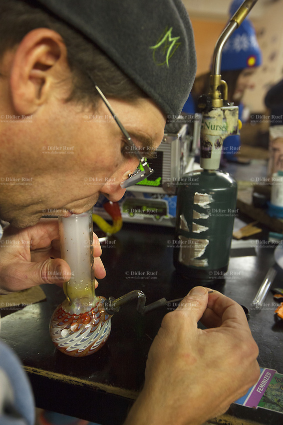 USA. Colorado state. Denver. Dabbing in iBAKE Denver, the first private membership head-shop that people can smoke marijuana in. Daniel Kosmicky is dabbing which is a slang term used to describe taking single dose hash hits of concentrates that are referred to as oil, erl, earwax, wax, budder, BHO or shatter using pipes and bongs that are made specifically for smoking these cannabis extracts. The pieces are designed to have a skillet or nail that made from glass, quartz or titanium that is heated with a handheld torch, the user then 'dabs' a small of the extract onto the hot nail causing the concentrate to flash into a vapor that you inhale. Dabbing is the street name for use concentrated butane hash oil, which has THC concentrations as high as 75% (allegedly reaching the 90+ range in some cases) compared with typical pot concentration of about 10 to 15 percent. Depending on the concentrate one long, hard hit can feel as having five blunts at once. The result is a rapid and very strong high. Cannabis, commonly known as marijuana, is a preparation of the Cannabis plant intended for use as a psychoactive drug and as medicine. Pharmacologically, the principal psychoactive constituent of cannabis is tetrahydrocannabinol (THC); it is one of 483 known compounds in the plant, including at least 84 other cannabinoids, such as cannabidiol (CBD), cannabinol (CBN), tetrahydrocannabivarin (THCV), and cannabigerol (CBG). 18.12.2014 © 2014 Didier Ruef