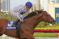 HALLANDALE BEACH, FL - MARCH 04:  Heart to Heart (ON) #3 wth jockey Julien Leparoux on board, wins the Canadian Turf Stakes (Grade III) at Gulfstream Park on March 04, 2017 in Hallandale Beach, Florida. (Photo by Liz Lamont/Eclipse Sportswire/Getty Images)