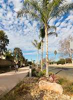 A casual cyclist carrying items in his left rides towards the camera along the Harbor Boulevard Cornerstone Bike Trail in Costa Mesa, California under a blue sky dotted with small clouds.  The man is on a black BMX-style bike; he's wearing shorts and a black hoodie.  The landscape architecture work on the project was done by David Volz Design.