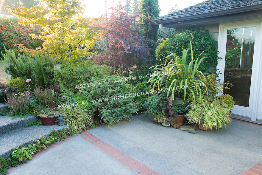 09/07; images of pots on a patio at Stacie Crooks' garden, 17710 14th Ave. NW in Seattle