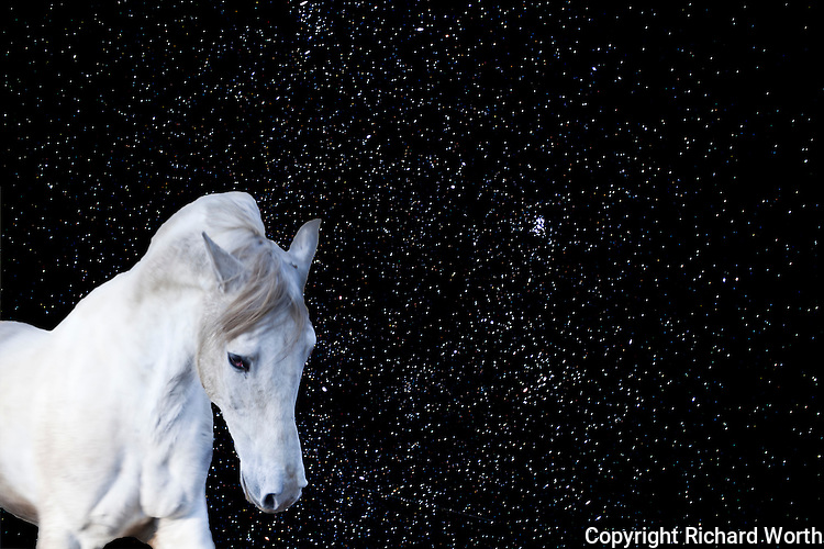 On a clear night, maybe you really can 'see forever', and imagine a white horse (unicorn?), galloping by.