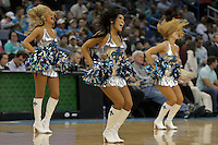 Nov 21, 2009; New Orleans, LA, USA; New Orleans Hornets Honeybees dancers perform during a game against the Atlanta Hawks at the New Orleans Arena. The Hornets defeated the Hawks 96-88. Mandatory Credit: Derick E. Hingle-US PRESSWIRE