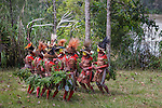 Huli wigmen dancing in a circle, Papua New Guinea
