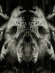 A conceptual image of a face made from bones