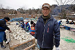Hisashi Abe is helped by volunteers from NGO Peace Boat to restore his aquaculture business in Samenoura, Ishinomaki, Miyagi Prefecture, JapanPhotographer: Robert Gilhooly