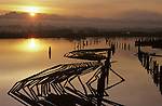 Sunrise over slough with silhouetted pilings and lumber on waterway near lumber mill, Everett, Washington State USA
