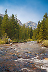 fly fishing the lake fork of rock creek with thunder mountain in the background in the absaroka beartooth wilderness