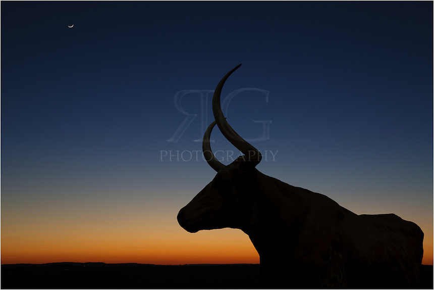 The sun was setting on a friend's ranch. No clouds were in the sky but the Longhorns on her Texas land were still in the area. I grabbed a small sturdy tripod and attempted to take some images of the horns against the sky. Most shots were a bit blurry but this one turned out quite sharp.