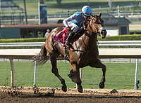 ARCADIA, CA  MARCH 11: Jockey Mike Smith gets a leg up on #4 Mastery, before the San Felipe Stakes  (Grade ll) on March 11, 2017, at Santa Anita Park in Arcadia, CA. (Photo by Casey Phillips/Eclipse Sportswire/Getty Images)<br /> ARCADIA, CA  MARCH 11: #1 Denman's Call, ridden by Tyler Baze, wins the Triple Bend Stakes (Grade l) on March 11,2017, at Santa Anita Park in Arcadia, Ca. (Photo by Casey Phillips/Eclipse Sportswire/Getty Images)